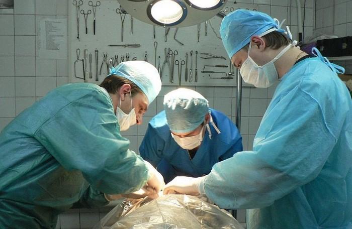 7 удивительных фактов о донорстве органов
